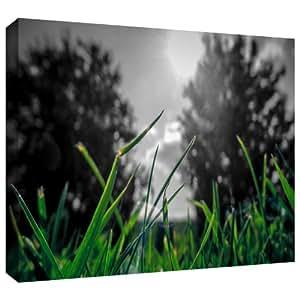 "ArtWall 'Grass' 画廊装裱油画艺术 John Black 绿色 24"" x 36"" 0oce035a2436w"