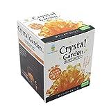 不思议 在水里培养水晶 花园 橙色