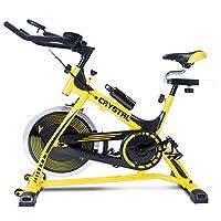 迈高登健身单车磁控车家用室内自行车银色静音款