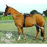 Rhinegold 中性款训练系统,带滚轮,白色/黑色,全尺寸