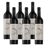 【亚马逊直采】Neethlingshof 尼斐侬庄园 小故事 狞猫(波尔多)干红葡萄酒750ml*6 (亚马逊进口直采红酒,南非品牌)自营精选