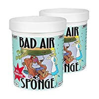 中国亚马逊:除甲醛,白宫御用,Bad Air Sponge 超级空气净化剂 400g*2罐168元(镇店之宝)