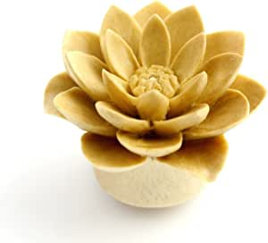 WildKlass White Water Lily (Sold as Pairs) (6g)