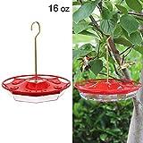 Juegoal 16 盎司(约 473.2 毫升)悬挂式蜂鸟喂食器,带 8 个喂食端口