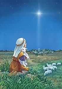 Toland Home Garden Shepherd's Watch 12.5 x 18 Inch Decorative Sheep Field Christmas Star Jesus Birth Garden Flag