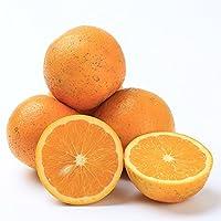 麻阳冰糖橙10斤 柑橘小橙子 新鲜水果 (10斤约40个)