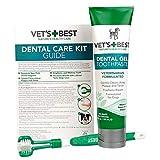 Vet's Best Enzymatic 狗狗牙膏 – 牙齿清洁和清新口腔护理凝胶 – 清爽* 3.5 Ounce