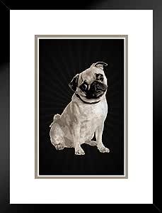 海报 Foundry Dogs PugsWrinkly 短面画 棕色和黑色艺术印刷品 哑光框架海报 20x26 inches 236321