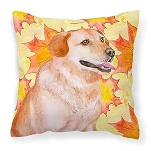 Caroline's Treasures BB9975PW1414 拉布拉多猎犬秋季户外帆布枕,多色