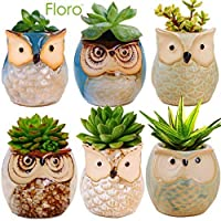 6 只猫头鹰花盆 - 理想的肉植花盆 - 华丽的猫头鹰设计 - 包括排水孔 - 花朵或 Bonsai 植物陶瓷盆 适用于室内/室外 - 提供全天候耐用性