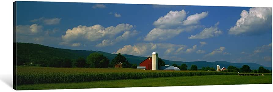 """iCanvasART Cultivated field in front of a barn, Kishacoquillas Valley, Pennsylvania, USA Canvas Print by Panoramic Images, 48"""" x 16""""/1.5"""" Deep"""