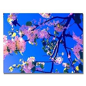 Trademark Fine Art Pink Flowering by Amy Vangsgard Canvas Wall Art, 18x24-Inch