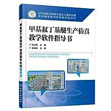 甲基叔丁基醚生产仿真教学软件指导书