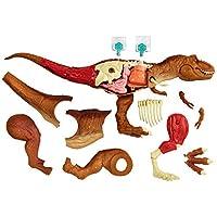 Jurassic World Stem 霸王龙龙解剖套件
