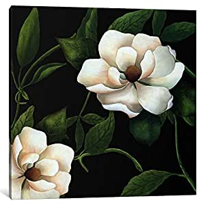 iCanvasART 9694-1PC3-26x26 Sweet Magnolias I from Color Bakery Collection Canvas Print by Color Bakery, 0.75 by 26 by 26-Inch