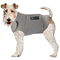 American Kennel Club Calm Anti-Anxiety and Stress Relief Coat for Dogs 灰色 X-S