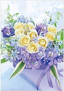 Pinkarp 明信片 50片 FW231 白玫瑰 Delfinum