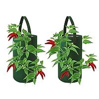 Pri Gardens 悬挂增氧花盆,适用于辣椒、草莓和草本,每种植有 8 个孔