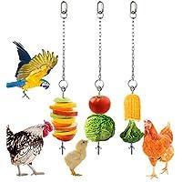 Geila 3 件不锈钢悬挂喂食器链玩具蔬菜串水果蔬菜盒带链子适用于鸡、宠物、鸡、鸟、鹦鹉