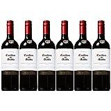 Casillero del Diablo 红魔鬼 卡本妮苏维翁红葡萄酒750ml*6(智利进口红酒)
