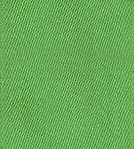 "娱乐活动与 caspari 纯色缎带 Solid Lime Green Satin 1 1/2"" x 9 yd"