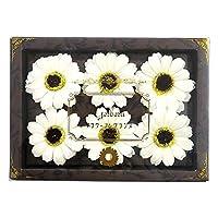 九州花 服务花卉谷歌沐浴剂 栀子花香 6轮装 CR 753657
