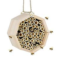 Winemana 手工制作天然竹蜂巢,梅森蜜蜂屋,适用于独居土蜜蜂,5.9 英寸(约 15 厘米) M