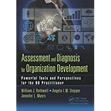 Assessment and Diagnosis for Organization Development: Powerful Tools and Perspectives for the OD Practitioner (English Edition)