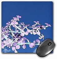 3dRose 鼠标垫 Bonsai 倒置紫色白色反抗天空波萨卡拉 - 20.32 x 20.32 厘米 (mp_182075_1)