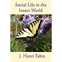 Social Life in the Insect World (Unabridged Start Publishing LLC) (English Edition)