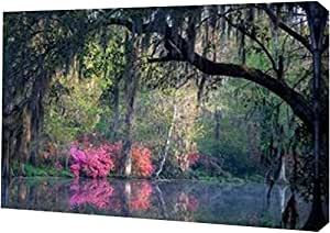 "PrintArt GW-POD-33-H1171D-20x13 ""早晨宁静""由 H.J. 提供 Herrera 画廊装裱艺术微喷油画艺术印刷品 20"" x 13"" GW-POD-33-H1171D-20x13"