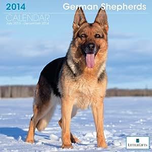 LittleGifts 德国牧羊犬 2014 日历 (7060)