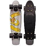 Penny 55.9cm homer 滑板