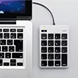SANWA SUPPLY 山业 Mac专用数字小键盘 财务会计用 带USB集线器功能 银行财务炒股会计办公 银色