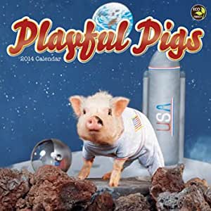 Playful Pigs 2014 挂历