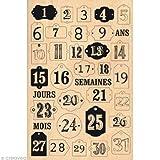 Florilèges fha213051 印章剪贴簿设计日 12 月 15 x 10 x 2.5 厘米,米色