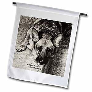milas 艺术 Dogs–德国牧羊犬–旗帜 12 x 18 inch Garden Flag
