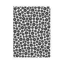 "Darice""精致的野花""浮雕文件夹,透明/白色,10.8 x 14.8 厘米 透明/白色 4.25 x 5.75-Inch 30008381"