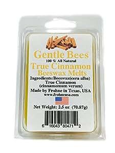 Gentle Bees True Cinnamon Beeswax Melts