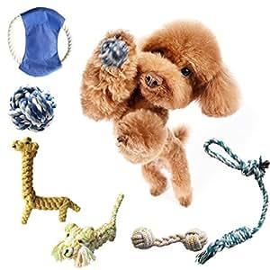 koodon 6件装宠物绳索玩具创意设计适用于小号中号和大狗 蓝色