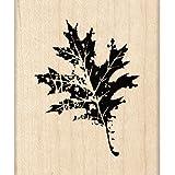Inkadinkado 木制橡皮印章 G,橡木叶