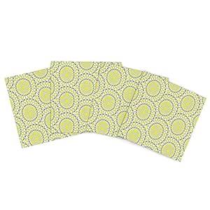 Kess InHouse Miranda Mol Sproming Cells 户外餐垫,15 x 15 英寸,4 件套
