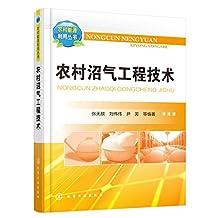 农村沼气工程技术 (农村能源利用丛书)