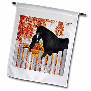 "3drose DOREEN erhardt HORSES–珍贵黑猫和黑色马 sharing A moment OF 友谊背后的 picket 围栏秋季 .–旗帜 18"" x 27"""