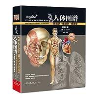 人体图谱:解剖学、组织学、病理学(第2版)