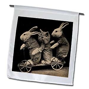 3dRose fl_153722_1 可爱的旧照片 兔子和 Pussy Cat 花园旗,30.48 x 45.72 cm