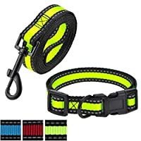 Night Reflective Nylon Strap Smaller Pet Dog Leash, Collar Combo set Lime Green 2 Pack Leash Collar 大