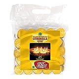 Mondo Verde LUZ25 带柠檬草的防蚊蜡烛 3.8 x 1.5 厘米 25 件装 黄色