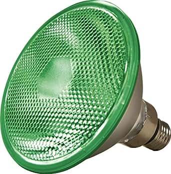 Dabmar Lighting DL-PAR38-100MH-G E26 中号基座绿色 100W 金属卤化灯灯泡
