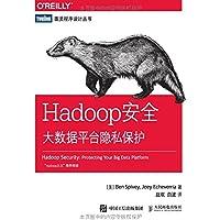 Hadoop安全大数据平台隐私保护/图灵程序设计丛书